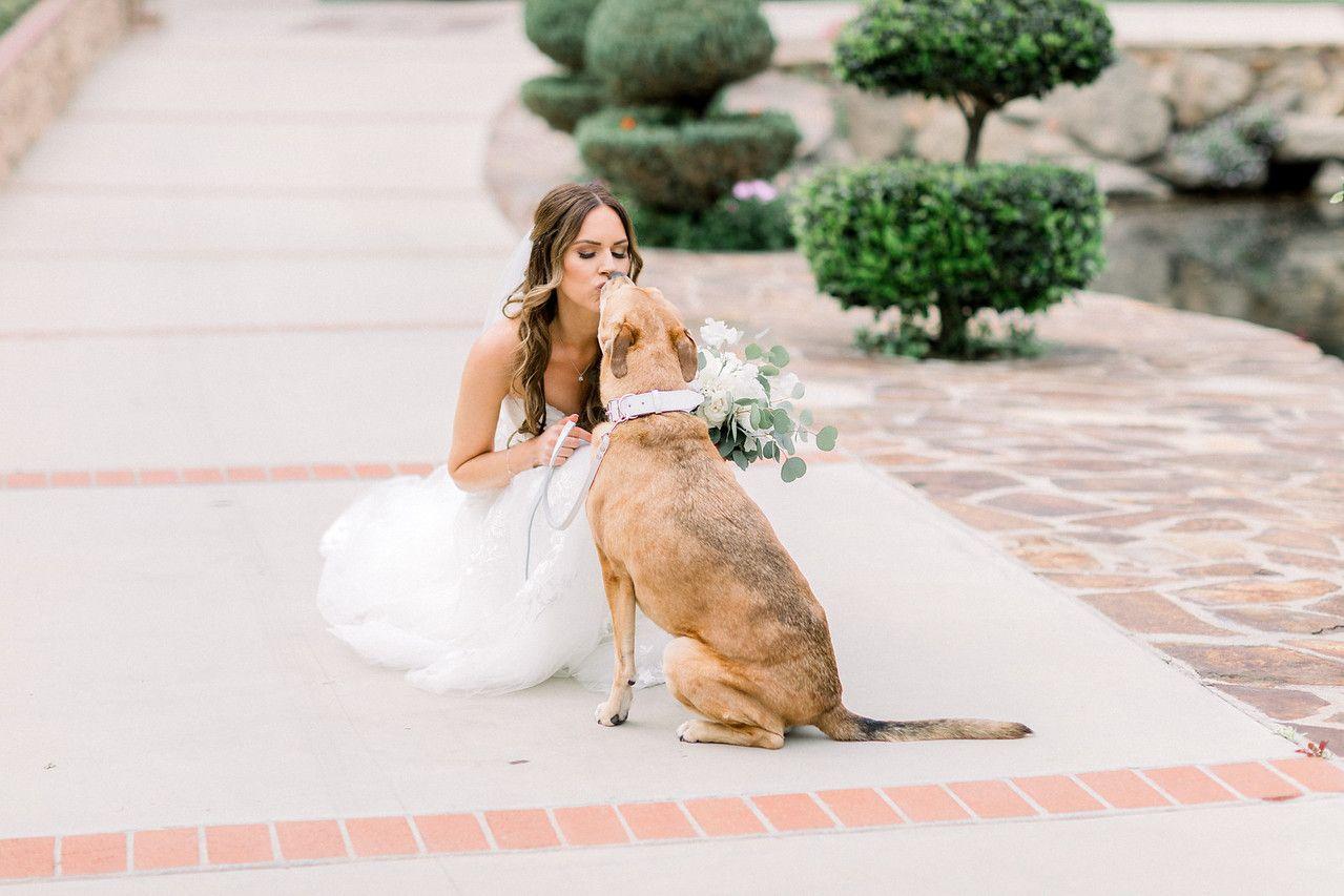 35 Los Willows Fallbrook Wedding Venues Southern California San Diego